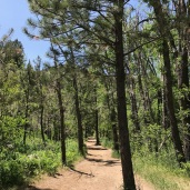 Portion of the bear creek trail in Colorado