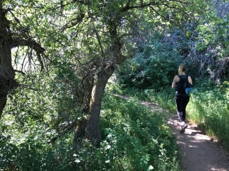 Woman walking along shaded hiking trail