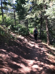 Woman walking along shaded trail