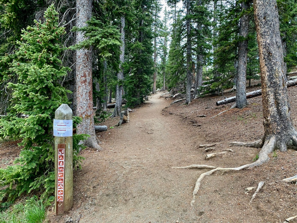 Beginning of the Chicago Lakes Trail, where it splits from the Echo Lake Trail