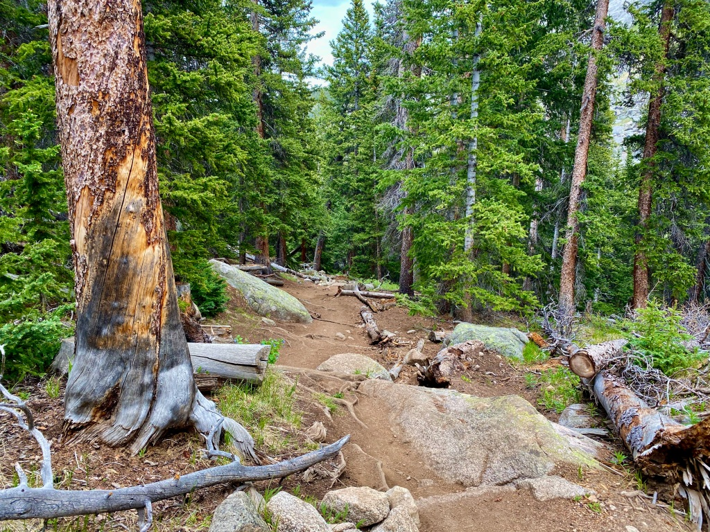 Rocky terrain at the beginning of the Chicago Lakes Trail