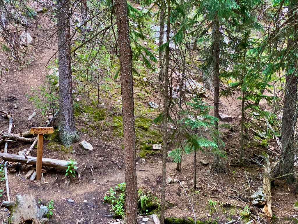 Trail leading to the Raven Climbing area just off the trail