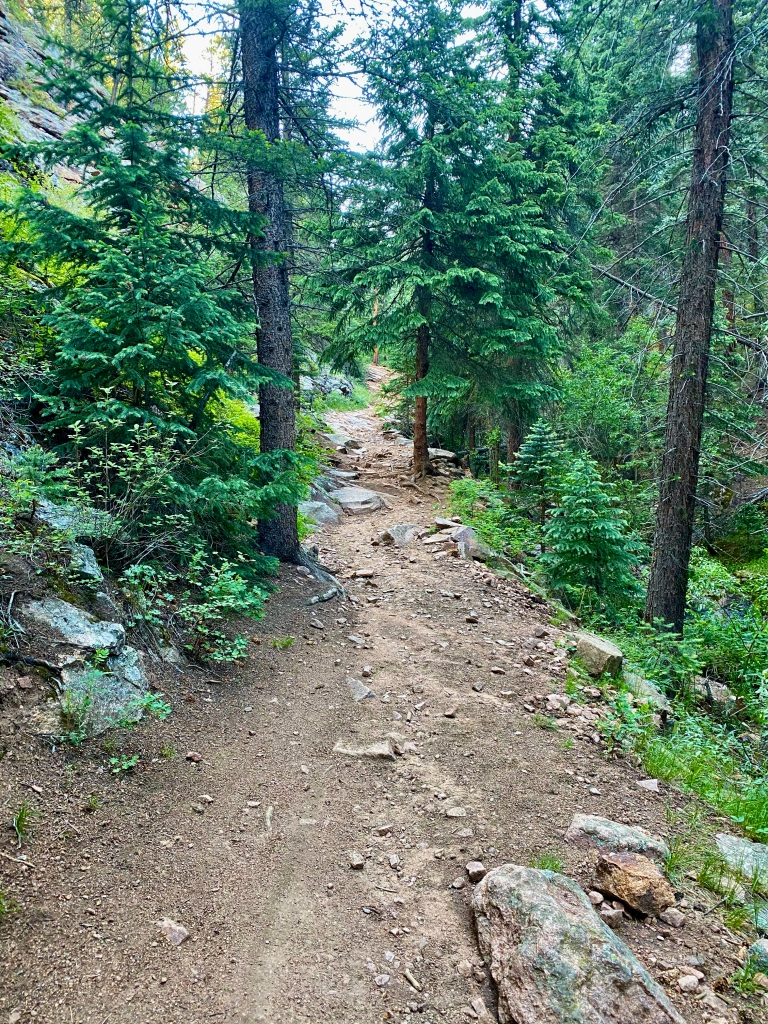 Rough hiking terrain on the Mason Creek Trail