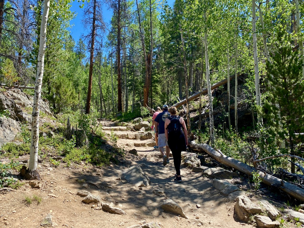 Family on a hiking trail surrounded by tree